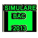 Rezultate simulare BAC 2013 – februarie